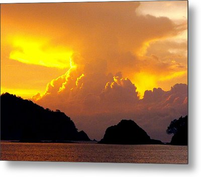 Sunscape Curu National Wildlife Park Costa Rica Metal Print