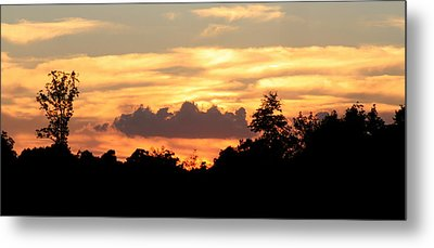 Sunset 1 Metal Print by Veronica Ventress