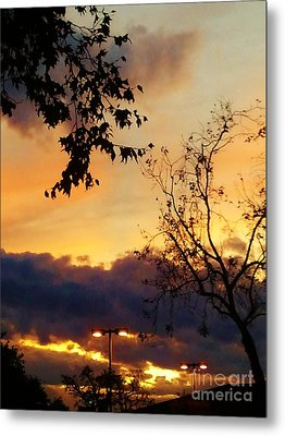 Metal Print featuring the photograph Sunset 2 by Jasna Gopic
