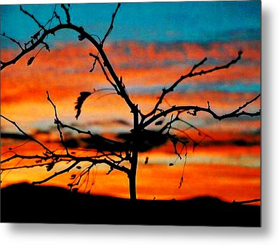 Sunset In Nevada Metal Print by Stephani JeauxDeVine