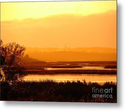 Sunset In The Rain Metal Print by Ronald Tseng