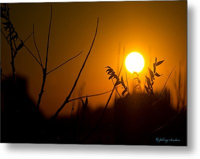 Sunset Metal Print by Johnny Sandaire