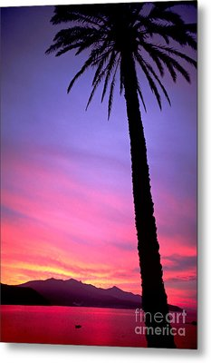 Metal Print featuring the photograph Sunset by Luciano Mortula