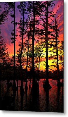 Sunset On Horseshoe Lake 1 Metal Print by Marty Koch