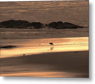 Sunset Shimmer Beach Metal Print by Debra     Vatalaro
