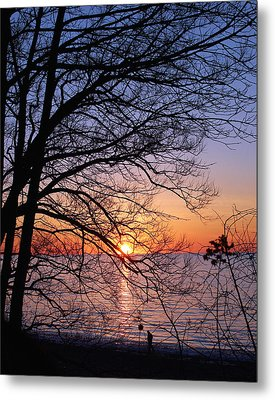 Sunset Silhouette 1 Metal Print by Peter Chilelli