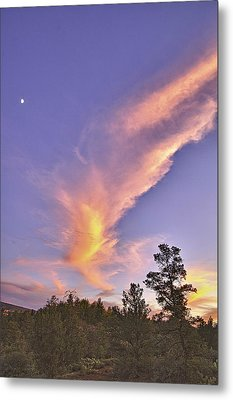Sunset Swoosh Metal Print by Forest Alan Lee