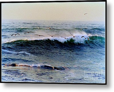 Metal Print featuring the photograph Sunset Watch  by Kathy Bassett
