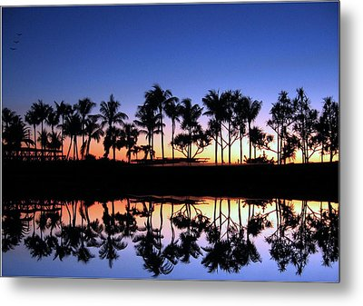 Sunsettrees Metal Print by Bill Lucas
