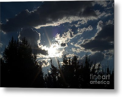 Sunshine Always Returns Metal Print