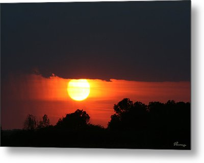 Sunshine In Rain Metal Print by Andrea Lawrence