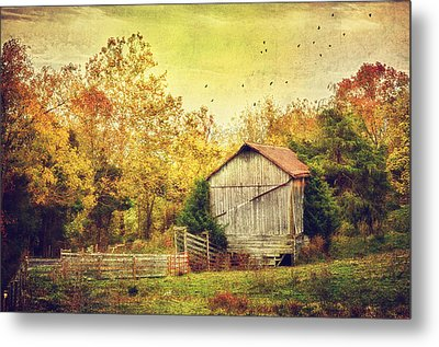 Surrounded By Fall Metal Print by Kathy Jennings