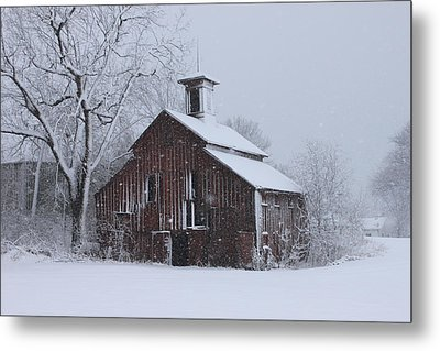 Surviving Another Winter Metal Print