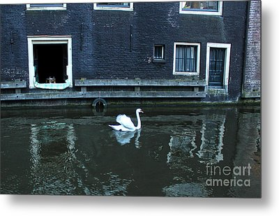 Swan In Amsterdam Canal Metal Print by Gregory Dyer