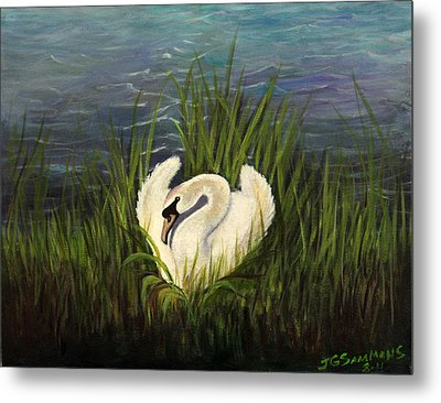 Metal Print featuring the painting Swan Nesting by Janet Greer Sammons