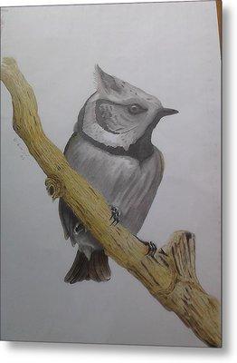 Swedis Birds Metal Print