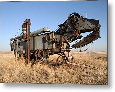 T-rex Of The Farm Metal Print