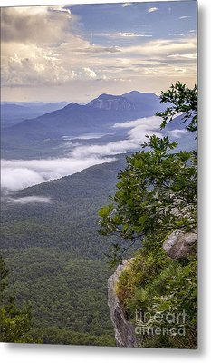 Table Rock And Yellow Flowers Metal Print by David Waldrop