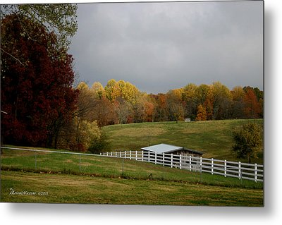 Metal Print featuring the photograph Take A Deep Breath by EricaMaxine  Price