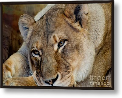 Taking A Break Metal Print