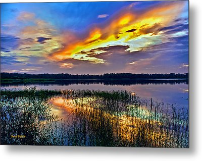 Talmadge Lake Florida Sunset Metal Print