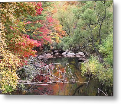 Tanasee Creek In The Fall Metal Print