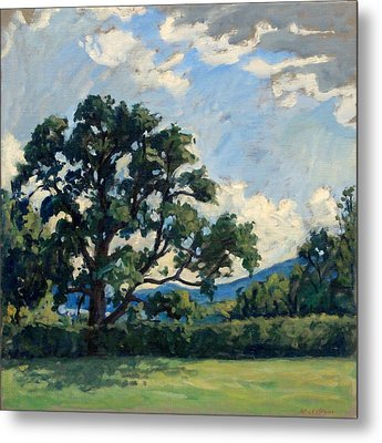 Tanglewood Afternoon Metal Print by Thor Wickstrom