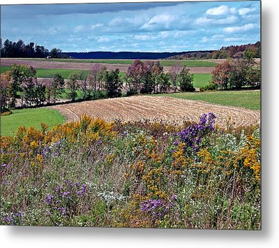 Metal Print featuring the photograph Tapestry by Christian Mattison