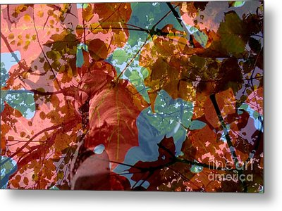 Metal Print featuring the photograph Tapestry Of Autumn 2 by France Laliberte