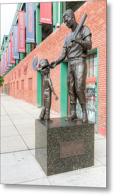 Teddy Ballgame Metal Print by Clarence Holmes