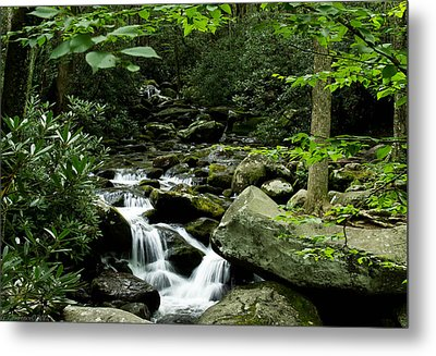 Tennessee Waterfall Metal Print by Glenn Lawrence