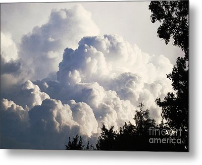 Texas Afternoon Sky Metal Print by Denise Hopkins