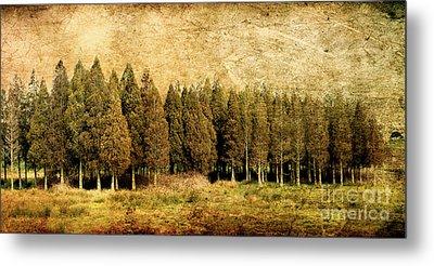 Textured Trees Metal Print
