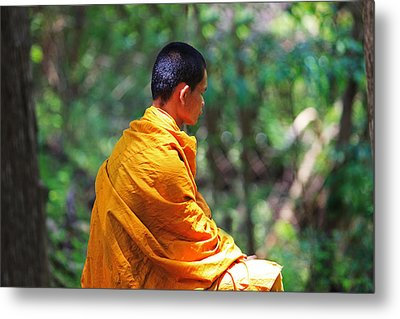 The Art Of Meditation Metal Print by Pete Reynolds
