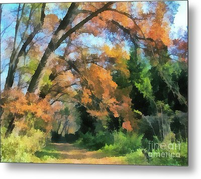 The Autumn Forest Metal Print by Odon Czintos