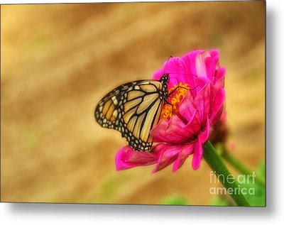 The Beauty Of Flowers Metal Print by Tamera James