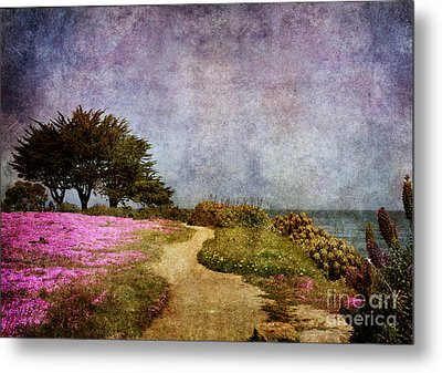 The Beckoning Path Metal Print by Laura Iverson