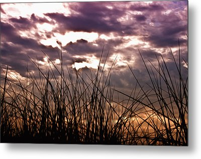 The Brewing Storm Metal Print by Bill Cannon