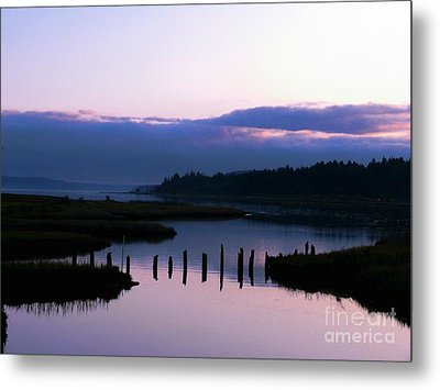 The Calm Before The Storm Metal Print by Terri Thompson