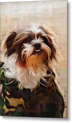 The Camo Makes The Dog Metal Print by Kathy Clark