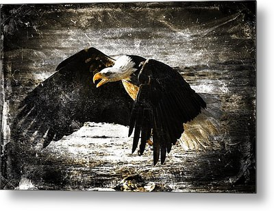 The Chase Metal Print by Carrie OBrien Sibley