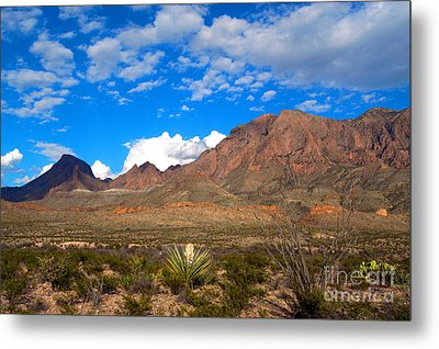 The Chisos Mountains Big Bend Texas Metal Print by Gregory G Dimijian MD