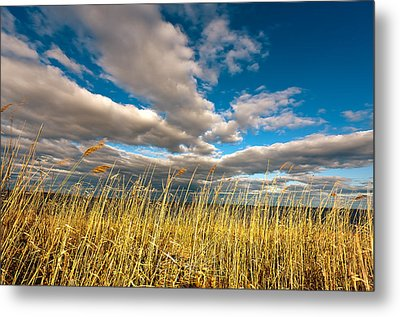 The Clouds Metal Print by Alhaji Samura
