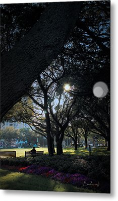 The Day's Reflection Limited Edition Bodecoarts Metal Print by Robin Lewis