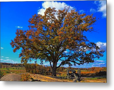The Devils Den Witness Tree. Metal Print by Dave Sandt