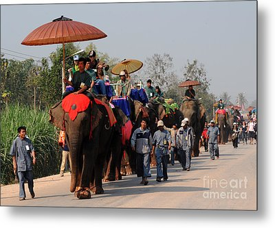 The Elephant Parade Metal Print by Vivian Christopher