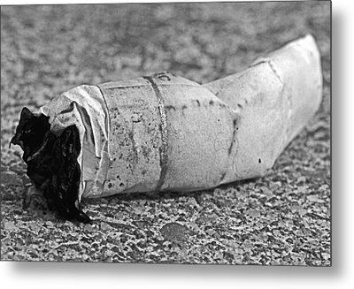 Metal Print featuring the photograph The End by Karen Harrison