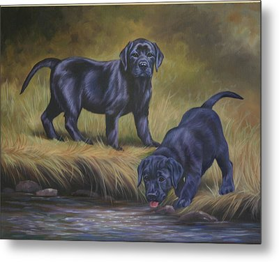 The Explorers Metal Print by Kathleen  Hill