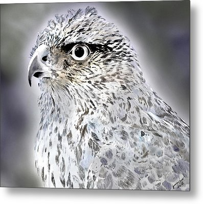 The Eye Of An Eagle  Metal Print by Yvonne Scott