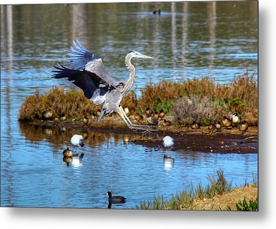 The Final Approach Metal Print